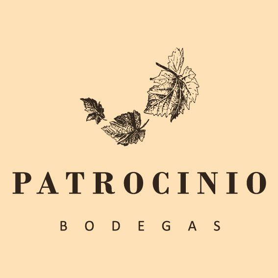 Nueva página web para Bodegas Patrocinio